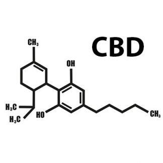 CBD izdelki